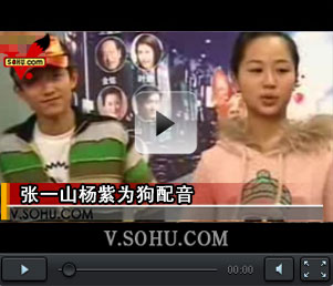 """视频:张一山杨紫为狗配音""""姐弟""""到一起就斗嘴"""
