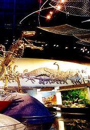 中华恐龙乐园